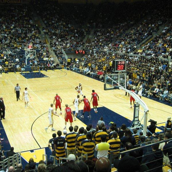 California Golden Bears Basketball