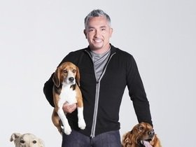 Advertisement - Tickets To Cesar Millan