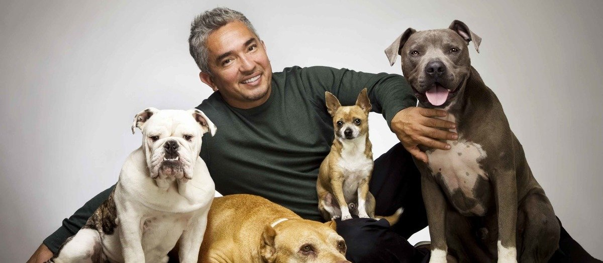 Cesar Millan - The Dog Whisperer Tickets