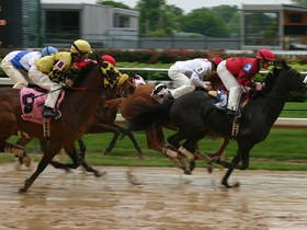 Twilight Racing - Reserved Boxes, Dining, Or General Admission