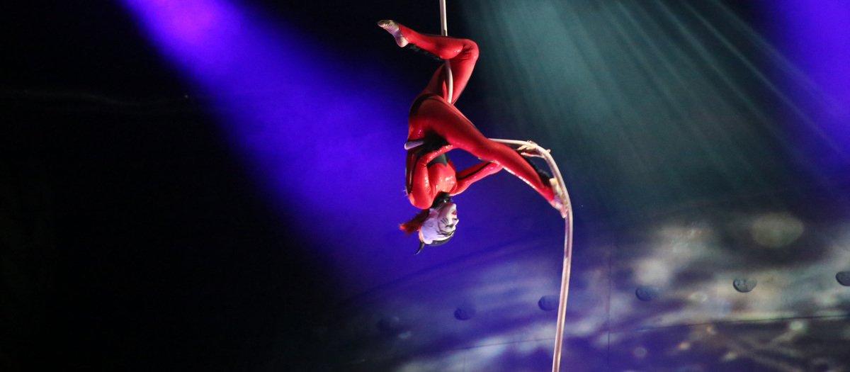 Cirque du Soleil Luzia Montreal Tickets