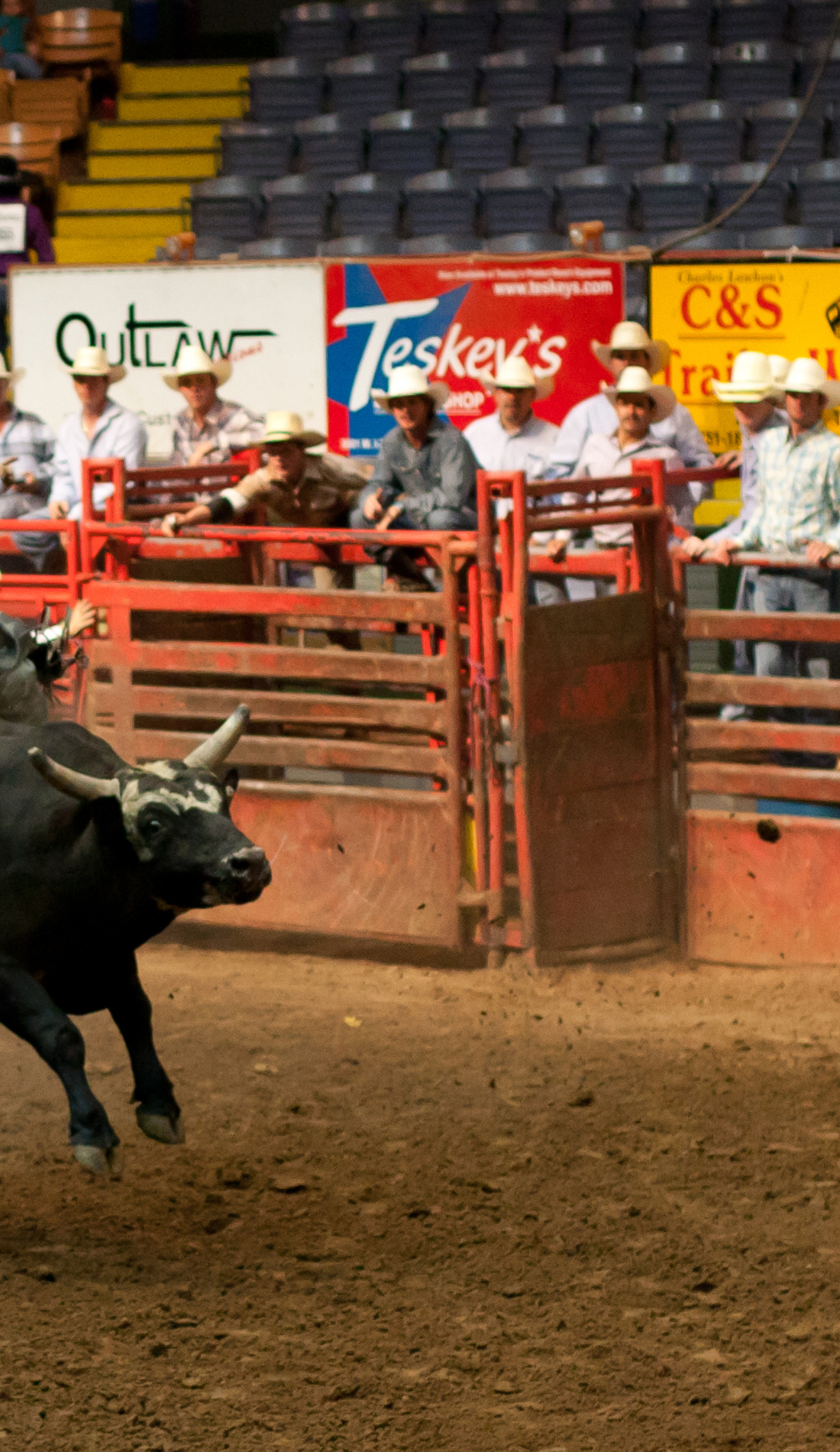 A Fort Worth Stock Show and Rodeo live event