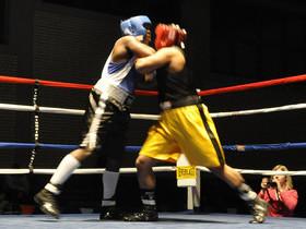 Super Welterweight WBA Interim Title: Gabriel Maestre v Cody Crowley