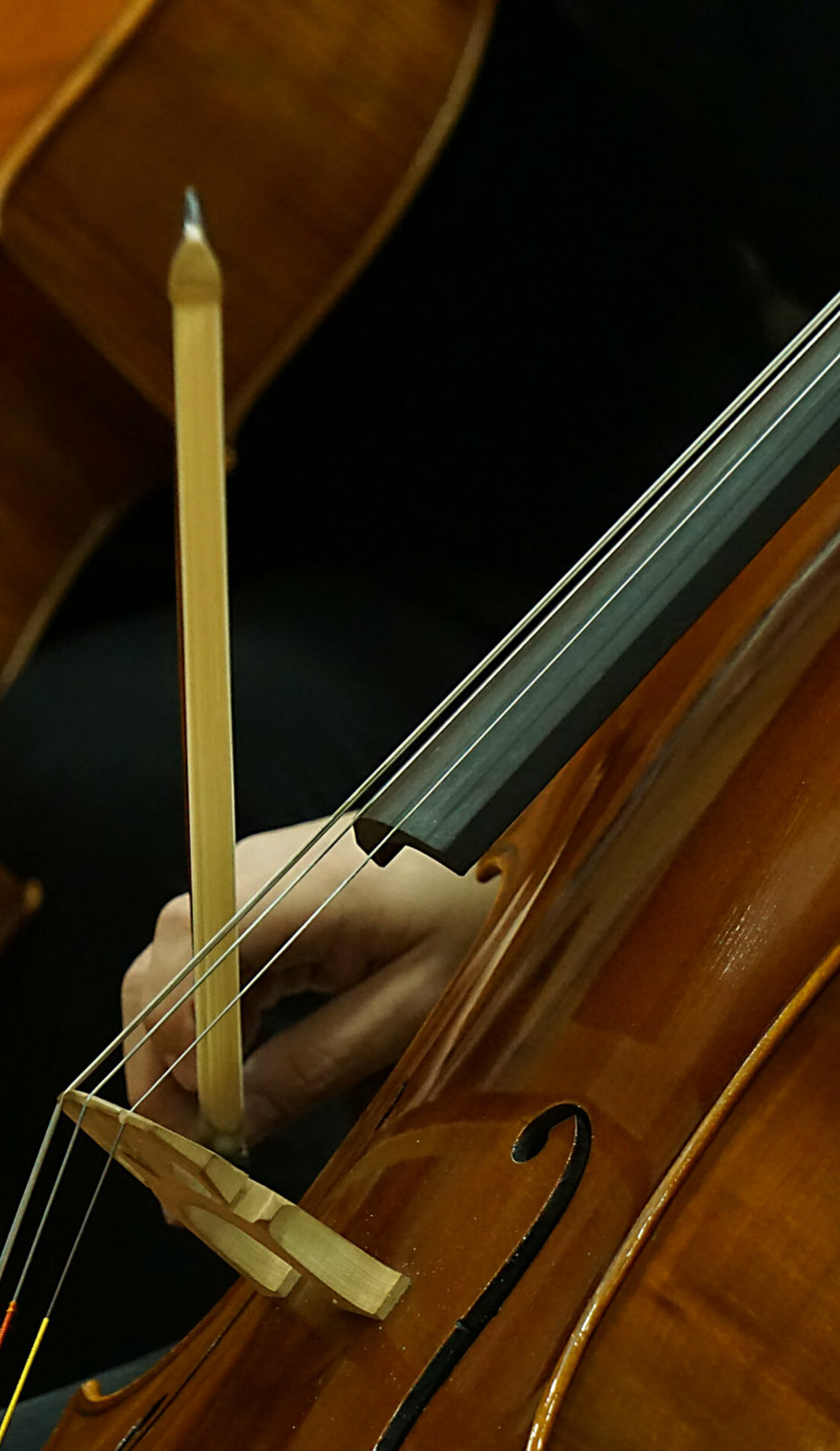 A Greensboro Symphony Orchestra live event