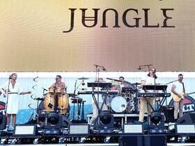 Jungle with Neil Frances
