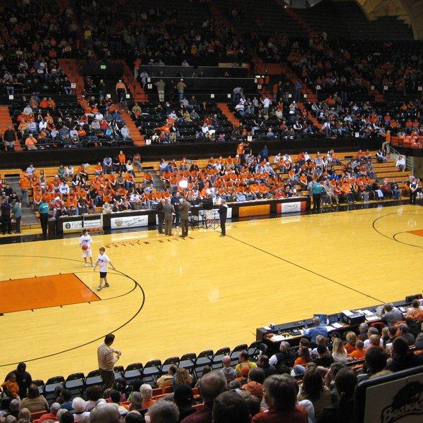 Oregon State Beavers Basketball