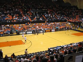 California Golden Bears at Oregon State Beavers Basketball