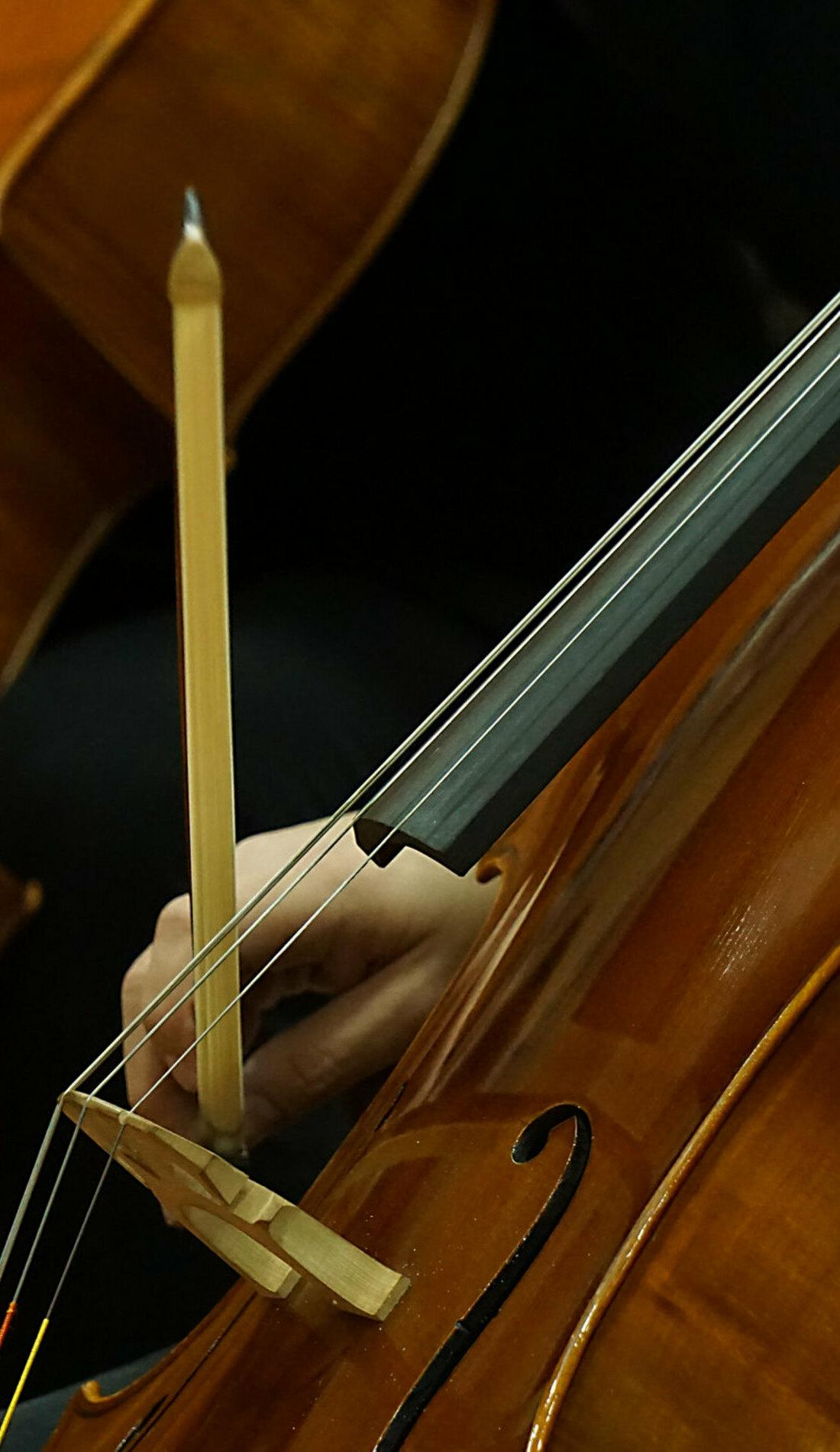 A Pensacola Symphony Orchestra live event