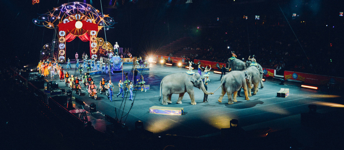 Ringling Bros and Barnum and Bailey Circus Out of this World Baltimore Tickets