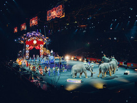 Ringling Bros and Barnum and Bailey Circus Out Of This World Charlotte Tickets