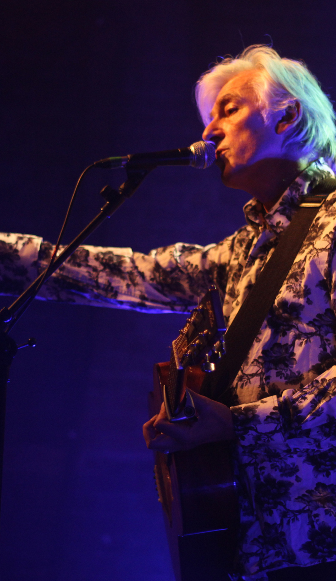 A Robyn Hitchcock live event