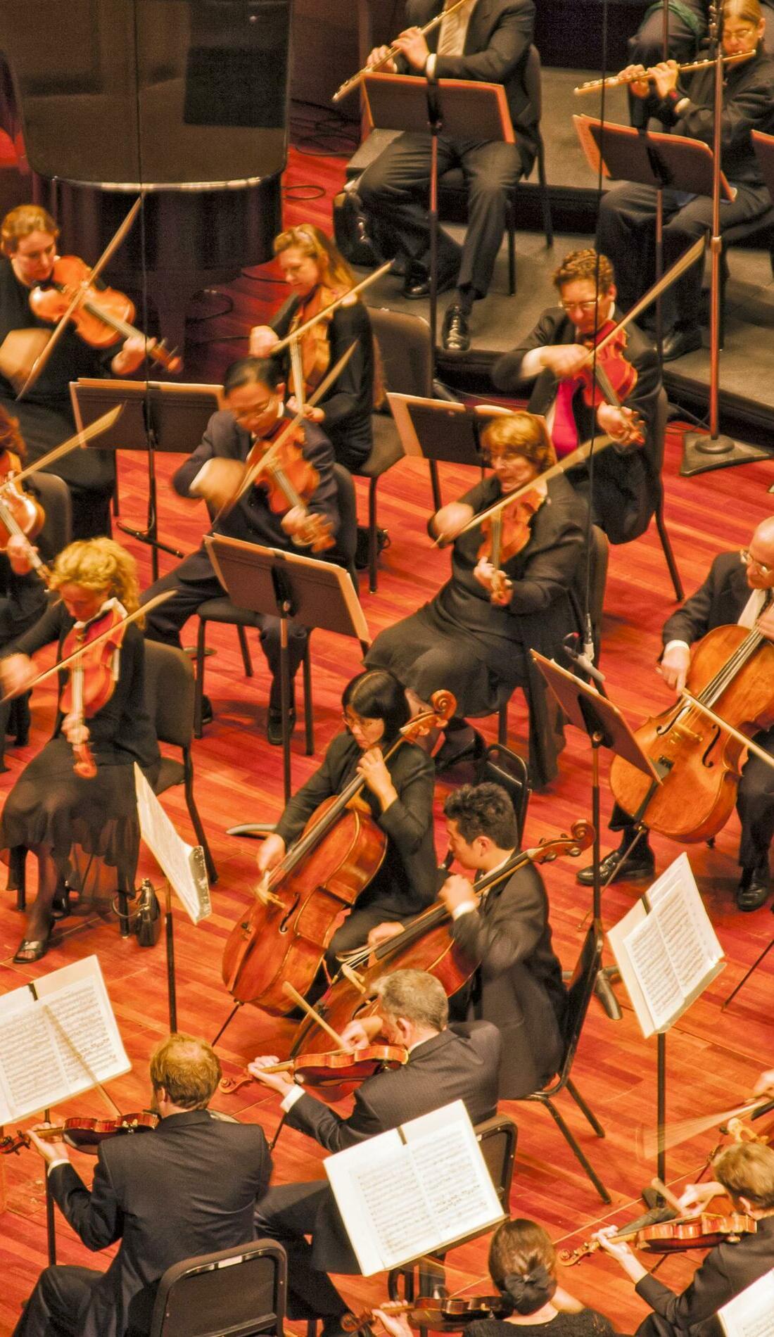 A San Diego Symphony live event