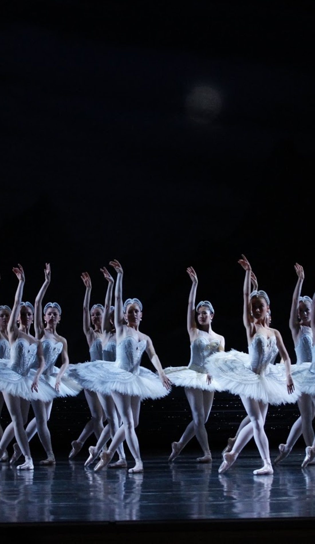 A Swan Lake live event