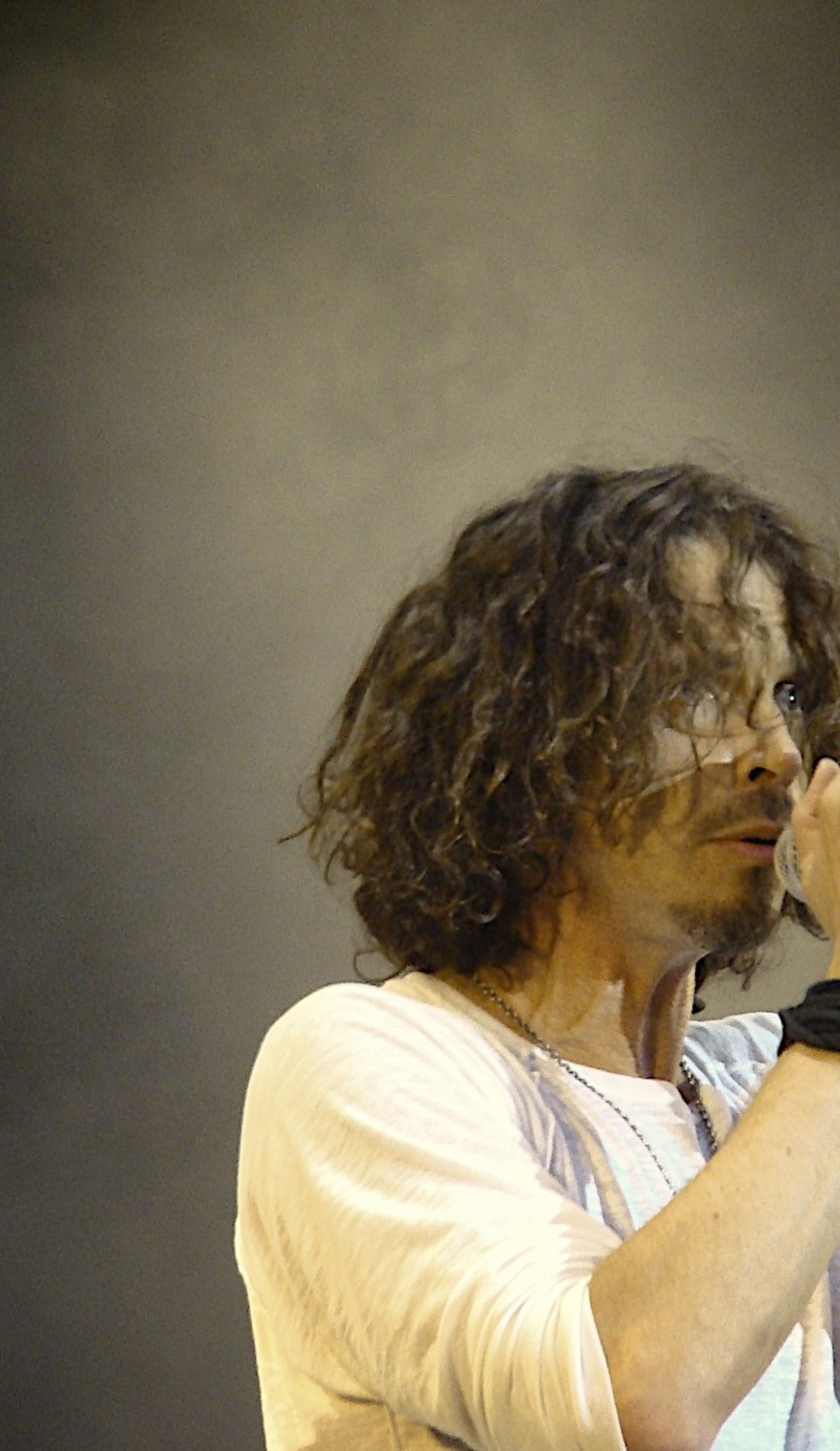 A Temple of the Dog live event