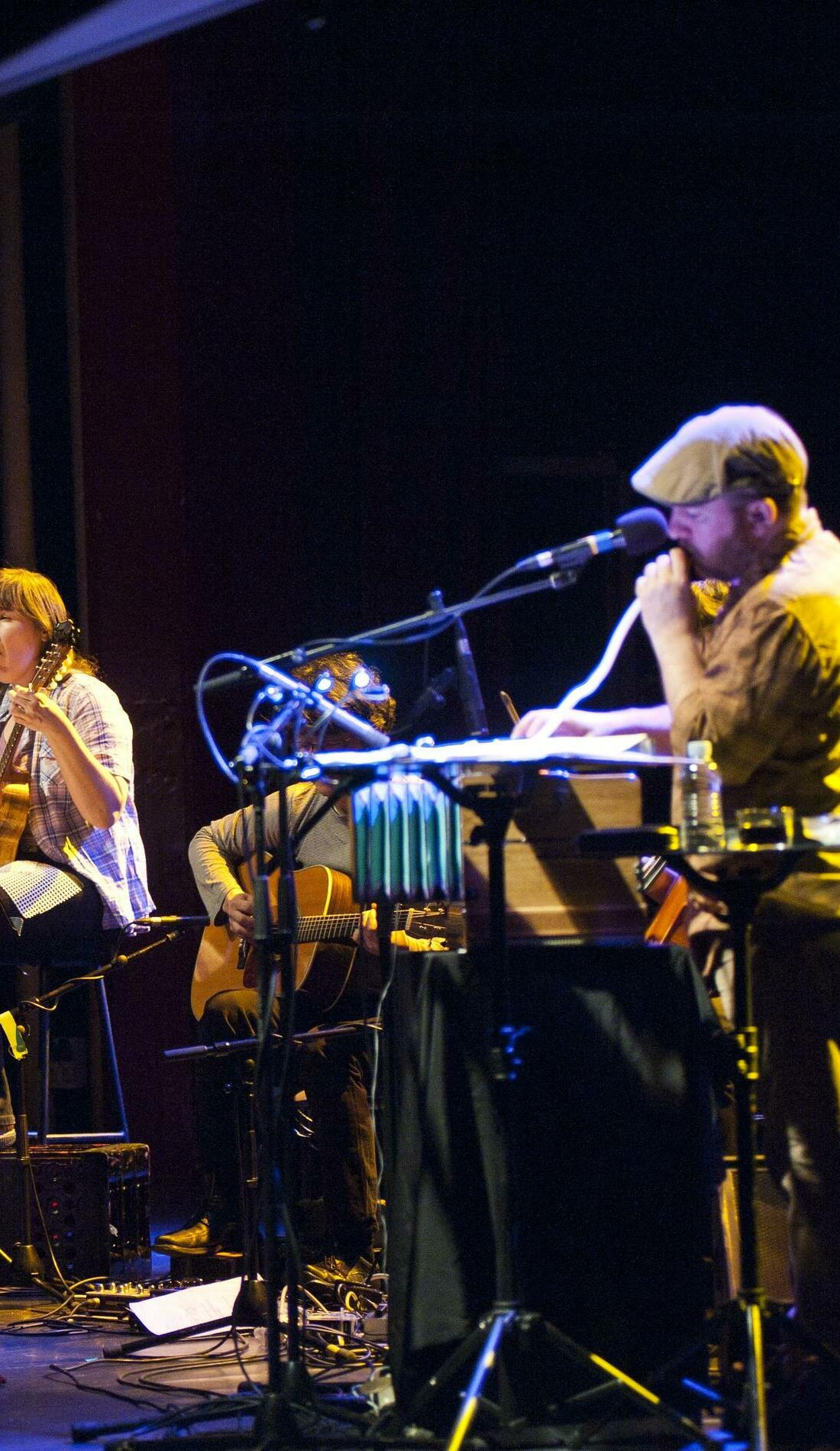 A The Magnetic Fields live event