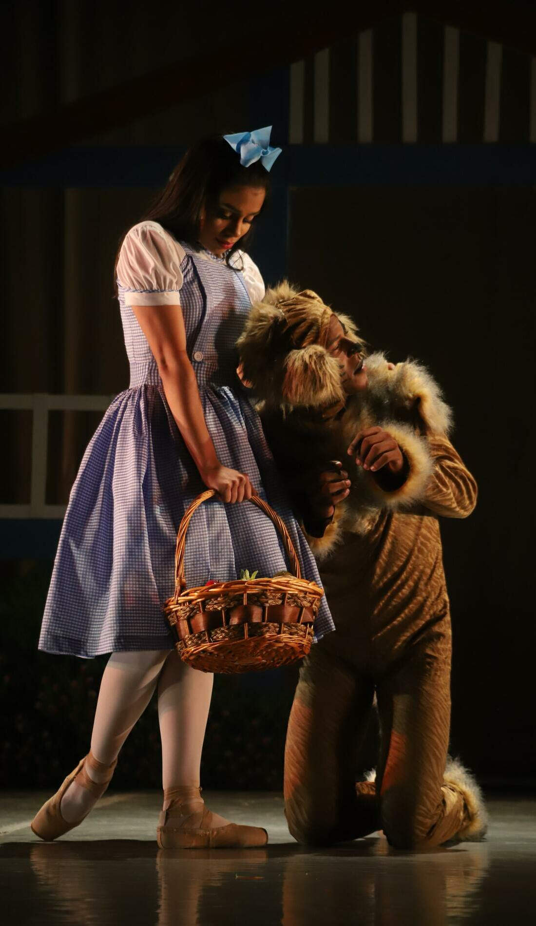 A The Wizard of Oz live event