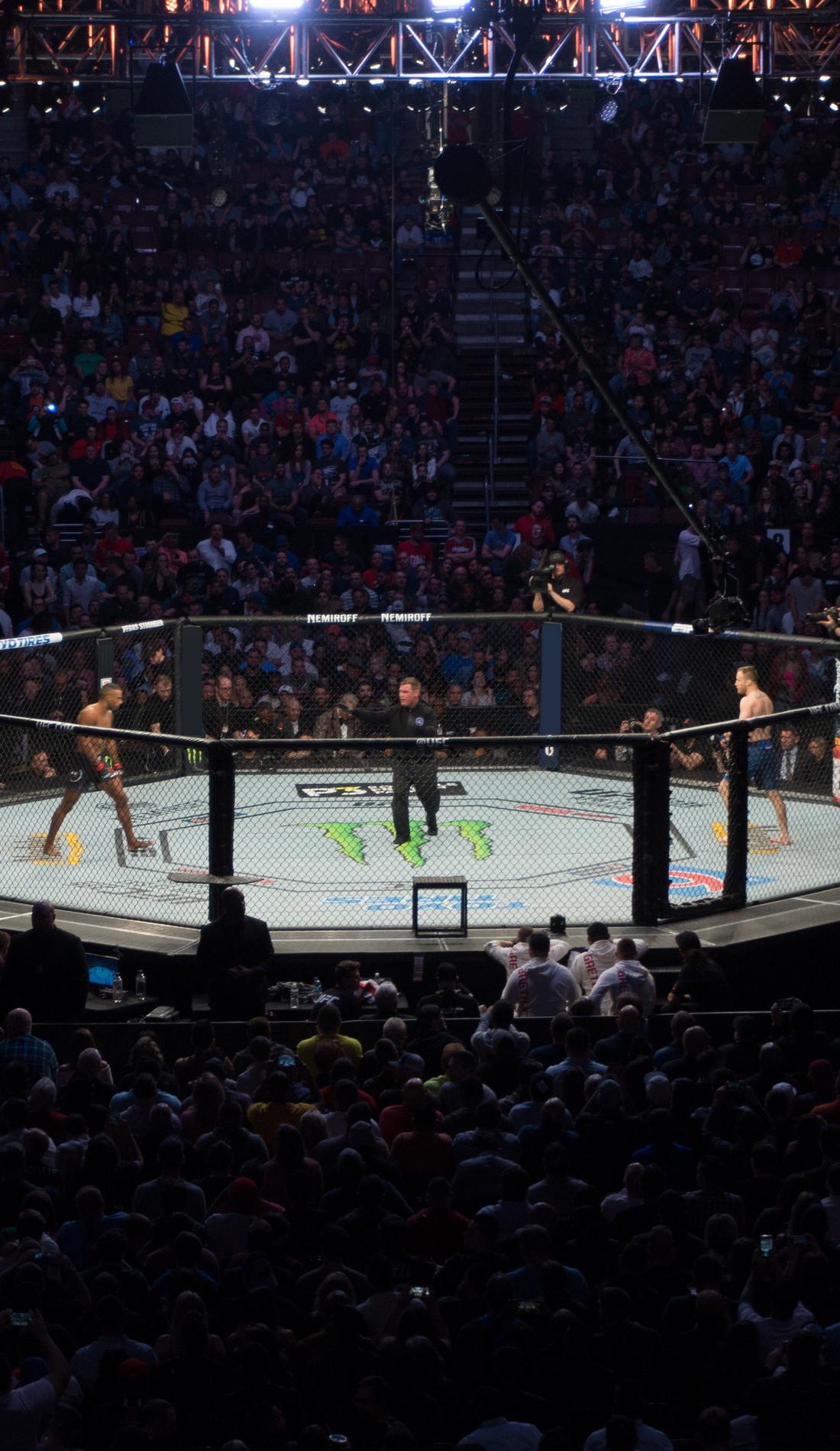A UFC live event