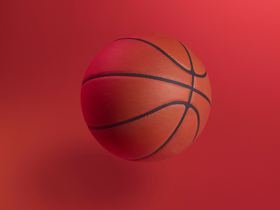 Wisconsin Badgers at Illinois Fighting Illini Womens Basketball