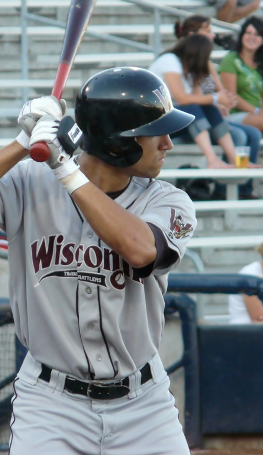 A Wisconsin Timber Rattlers live event