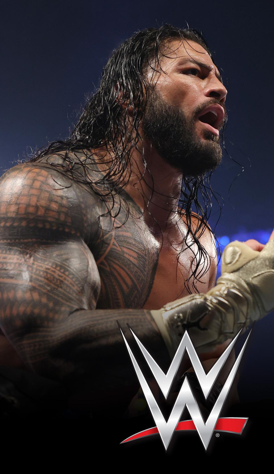 A WWE live event