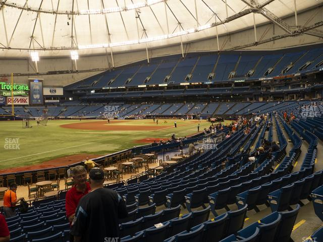 Tropicana Field Section 133 view