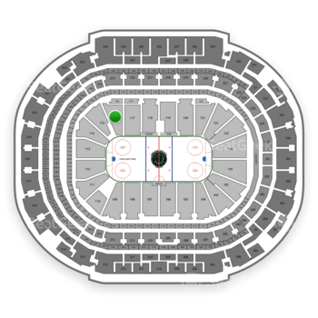 Dallas Stars at American Airlines Center Section 116 View