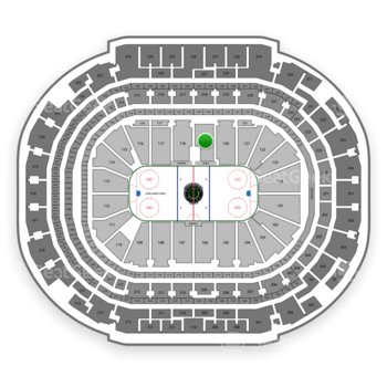 Dallas Stars at American Airlines Center Section 119 View