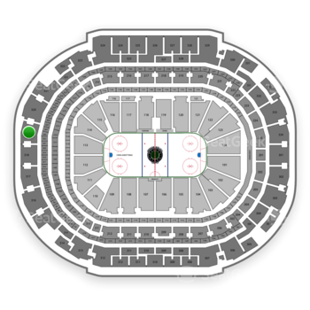Dallas Stars at American Airlines Center Section 319 View