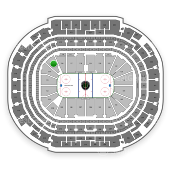 Dallas Stars at American Airlines Center Section 115 View