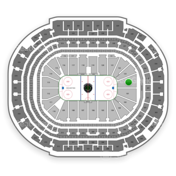 Dallas Stars at American Airlines Center Section 124 View