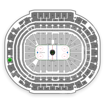 Dallas Stars at American Airlines Center Section 317 View