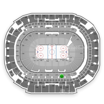 Dallas Stars at American Airlines Center Section 216 View