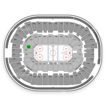 Detroit Red Wings at Joe Louis Arena Section 102 View