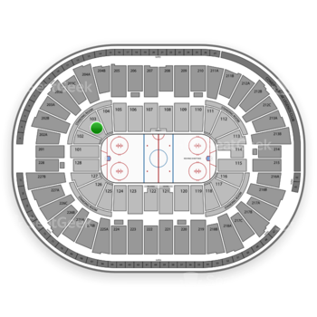 Detroit Red Wings at Joe Louis Arena Section 103 View