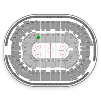 Detroit Red Wings at Joe Louis Arena Section 105 View