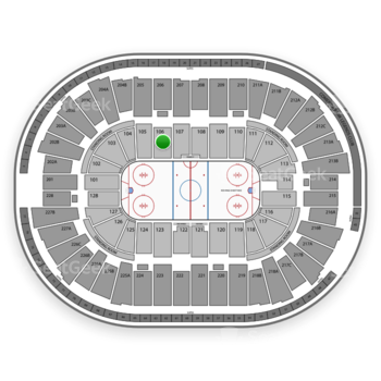Detroit Red Wings at Joe Louis Arena Section 106 View
