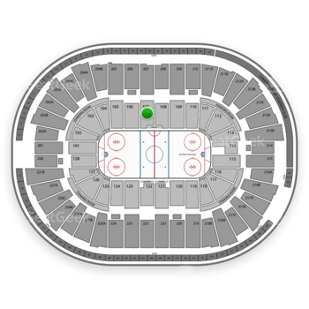 Detroit Red Wings at Joe Louis Arena Section 107 View