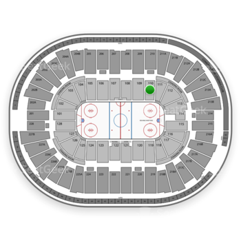 Detroit Red Wings at Joe Louis Arena Section 110 View