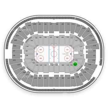 Detroit Red Wings at Joe Louis Arena Section 117 View