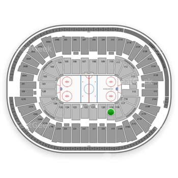 Detroit Red Wings at Joe Louis Arena Section 119 View