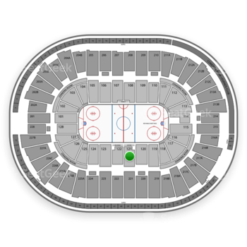 Detroit Red Wings at Joe Louis Arena Section 121 View