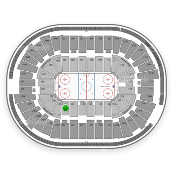Detroit Red Wings at Joe Louis Arena Section 124 View