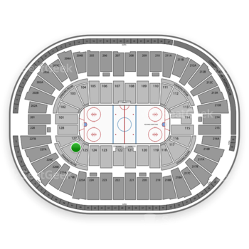 Detroit Red Wings at Joe Louis Arena Section 126 View