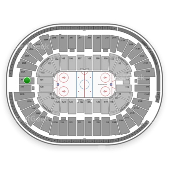Detroit Red Wings at Joe Louis Arena Section 201 View