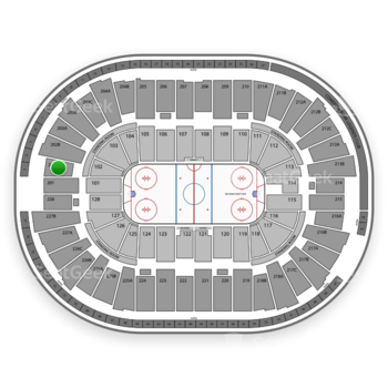 Detroit Red Wings at Joe Louis Arena 202 A View