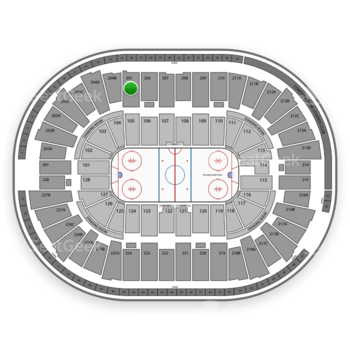Detroit Red Wings at Joe Louis Arena Section 205 View