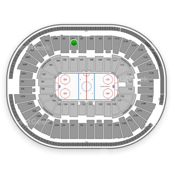 Detroit Red Wings at Joe Louis Arena Section 206 View