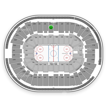 Detroit Red Wings at Joe Louis Arena Section 207 View