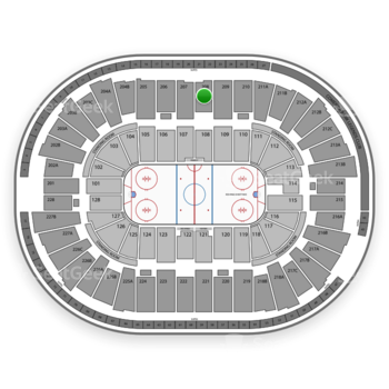 Detroit Red Wings at Joe Louis Arena Section 208 View