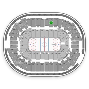 Detroit Red Wings at Joe Louis Arena Section 209 View